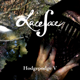 Hodgepodge V is the new release by Laceface the cellist